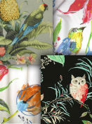 Bird Fabric - Discount Fabric
