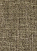 36282 26 Hunter Duralee Fabric