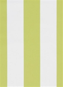 Cabana Stripe Lime Al Fresco Fabric