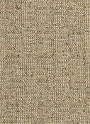 Coconut Earth Crypton Fabric