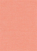 Cruise Coral Al Fresco Oxford Fabric