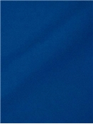 Canvas Cobalt Sunbrella fabric