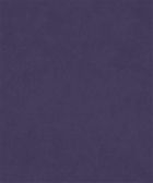 Counterpoint 11805 M9989-VIOLET