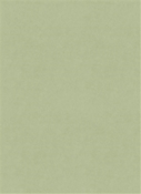 Counterpoint M9989 62101 Celadon Barrow Fabric