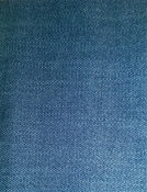 Daily Denim Crypton Fabric