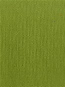 KANVASTEX 23 MOSS Canvas Fabric