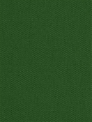 Kanvastex 290 Classic Green Canvas Fabric
