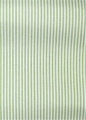 Laguna Celery Ticking Fabric