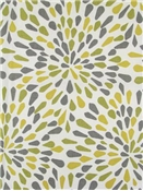 Many Petals Zest Crypton Fabric