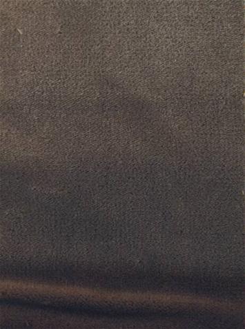 P Kaufmann Mojo Sparrow Velvet Fabric