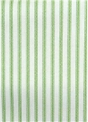 NY Ticking Stripe Apple Green