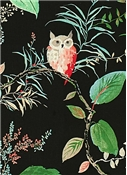 Owlish Black - Kate Spade Fabric