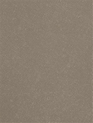 Perseid Mink Vinyl Fabric