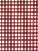 Morning Gingham Ruby
