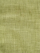Speedy Plus Green Tea Solid Fabric