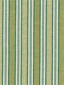 Stillwater Stripe Citrus Cotton Fabric