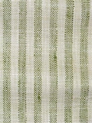 Swift Plus Green Tea Stripe Fabric