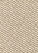 Thrill Linen Twill Fabric