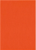 Pulitzers Pride Orange