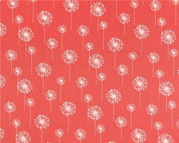 Small Dandelion Coral/White