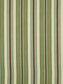 SQUAM STRIPE FERN