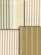 Tan Stripe Fabrics