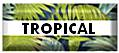Tropical fabric patterns for drapery or upholstery.