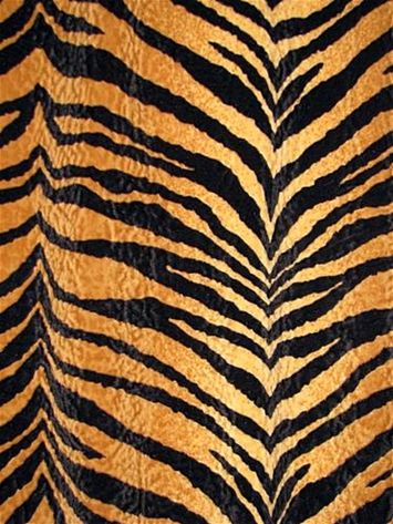 Bengali Gold Tiger Fabric Store Discount Fabric By The