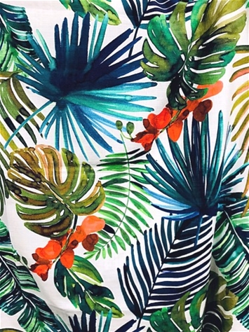 Biscayne Tropical Fabric
