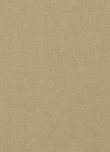 Cambria Flax Canvas Fabric