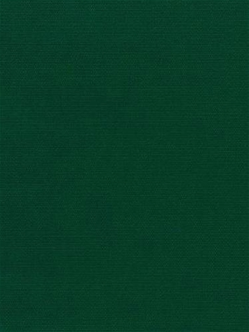 Canvas 5446 Forest Green