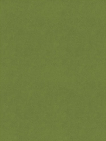 Counterpoint M9989 62103 Jade Barrow Fabric
