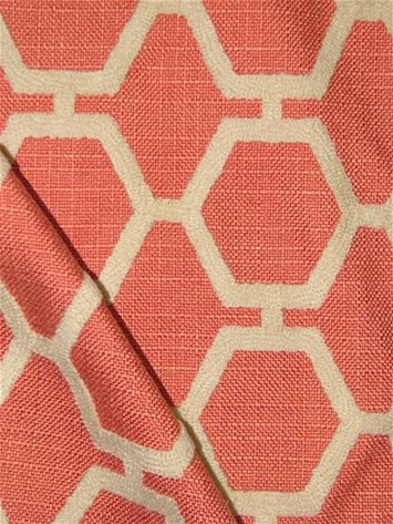 Izzy Coral Trellis Embroidery