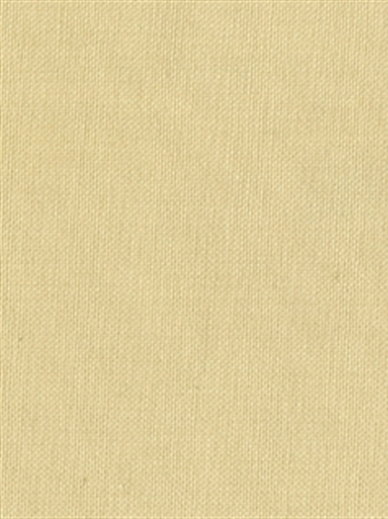 KANVASTEX 115 OLD IVORY Canvas Fabric