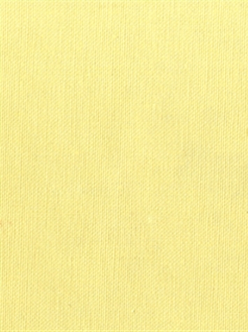 KANVASTEX 120 CHAMPAGNE Canvas Fabric