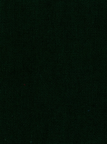 KANVASTEX 211 WINTERGREEN Canvas Fabric