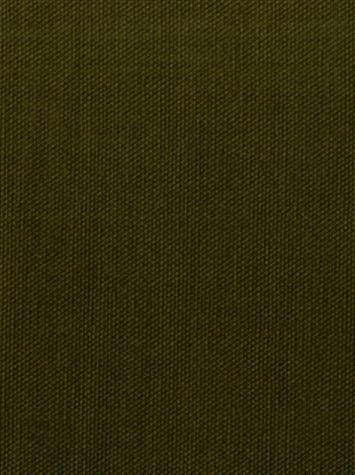 KANVASTEX 22 OLIVE Canvas Fabric