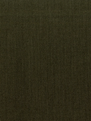 KANVASTEX 28 VERDE Canvas Fabric