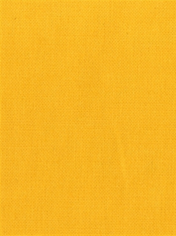 KANVASTEX 81 SUNSHINE Canvas Fabric