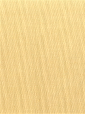 PEBBLETEX 100 CHAMPAGNE Canvas Fabric