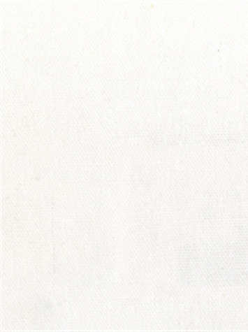 PEBBLETEX 11 WHITE Canvas Fabric