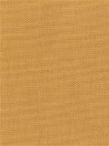 PEBBLETEX 134 FRENCH VANILLA Canvas Fabric