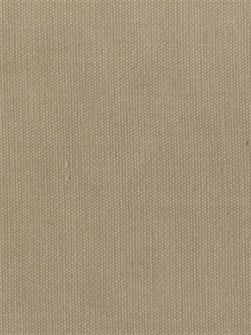 PEBBLETEX 196 LINEN Canvas Fabric