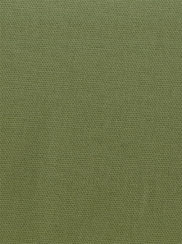 PEBBLETEX 228 FERN Canvas Fabric