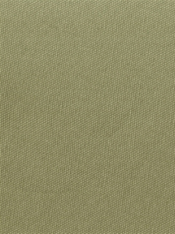 PEBBLETEX 270 CELADON Canvas Fabric