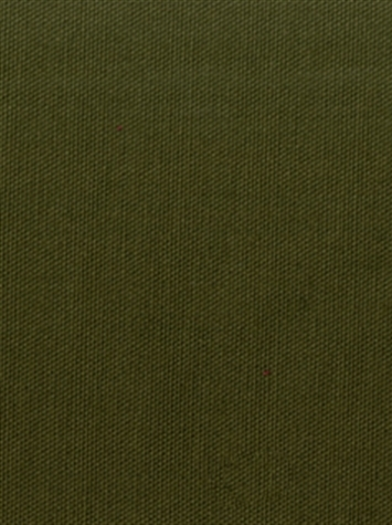 PEBBLETEX 295 BOXWOOD Canvas Fabric