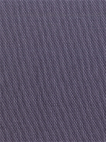 PEBBLETEX 47 PLUM Canvas Fabric