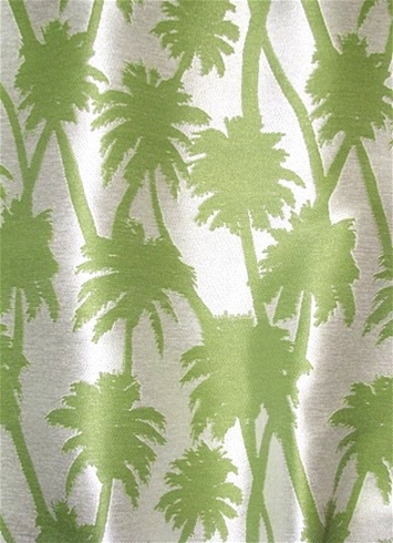 SD Little Palm 251 Island Green