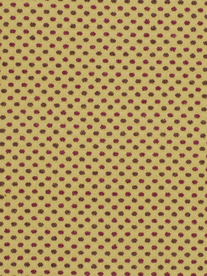 DOTS BOUCLE GOLD CURRANT