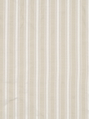 ASPEN STRIPE BIRCH